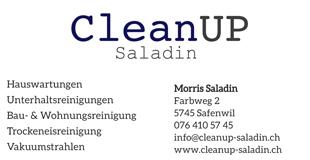 Cleanup Saladin